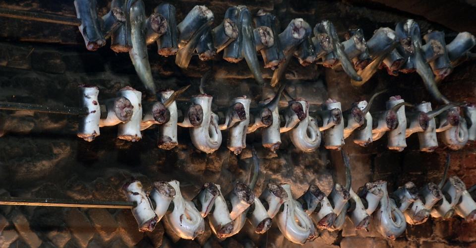 Comacchio – Tradizioni e Cultura